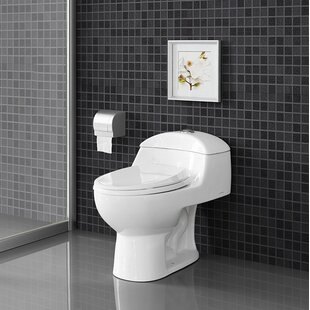 Chateau® Dual Flush Elongated One Piece Toilet