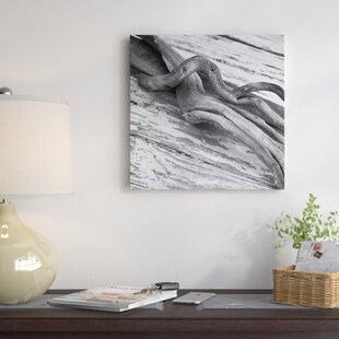 Driftwood Wall Art Wayfair