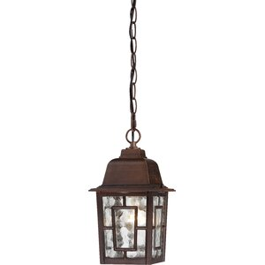 Timmons 1-Light Outdoor Hanging Lantern
