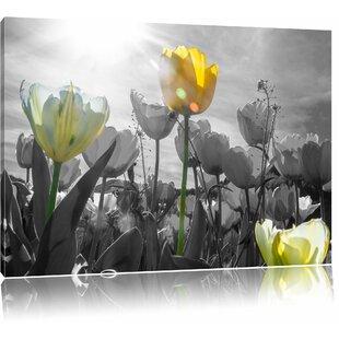 Beautiful Tulip Meadow Wall Art On Canvas