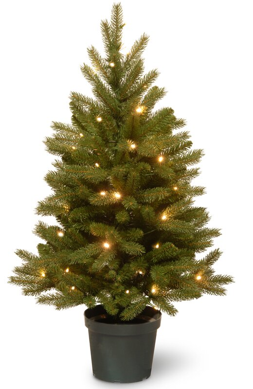 Jersey Fraser 3' Green Fir Artificial Christmas Tree with 35 Warm ...