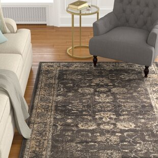 Crittenden Soft Anthracite Area Rug