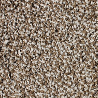 Carpet Tiles Amp Carpet Squares You Ll Love In 2019 Wayfair
