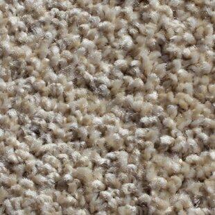 """Modern Residential 24"""" x 24"""" Cut Pile Carpet Tile"""