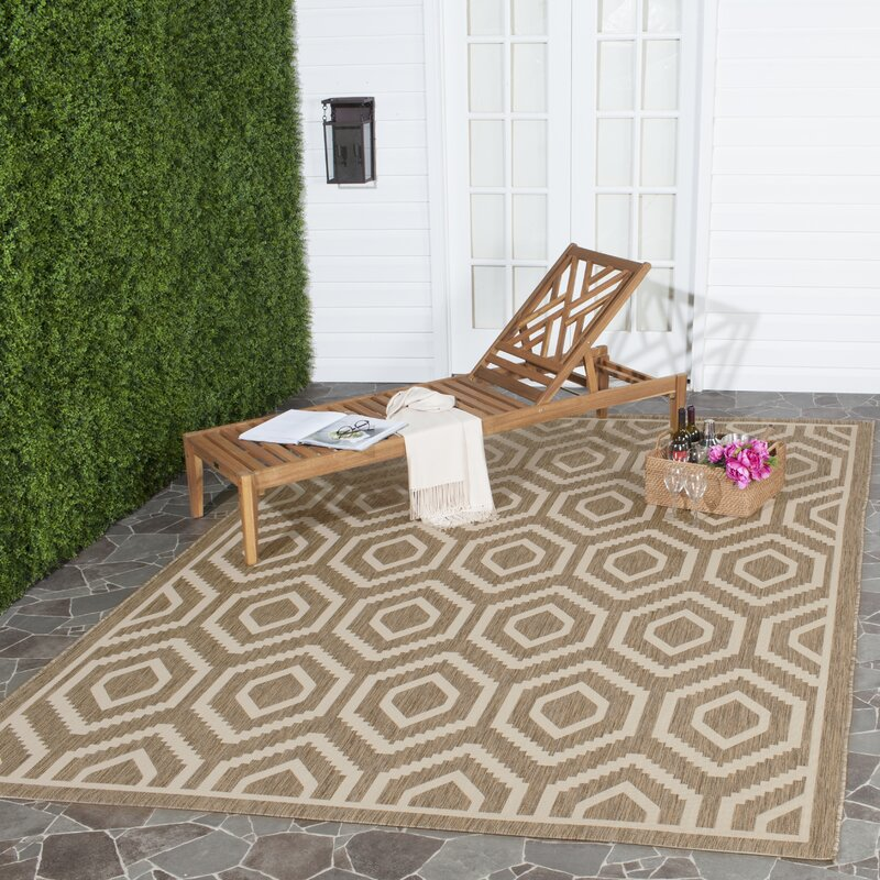 Langley Street Miami Brown/Tan Indoor/Outdoor Area Rug & Reviews ...
