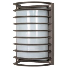 Arley 1-Light Outdoor Flush mount