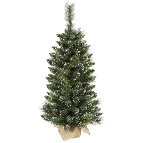 die saisontruhe k nstlicher weihnachtsbaum 91 cm in gr n. Black Bedroom Furniture Sets. Home Design Ideas