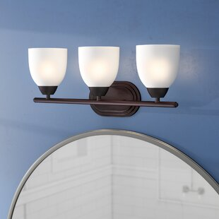 Hayden 3 Light Vanity Light