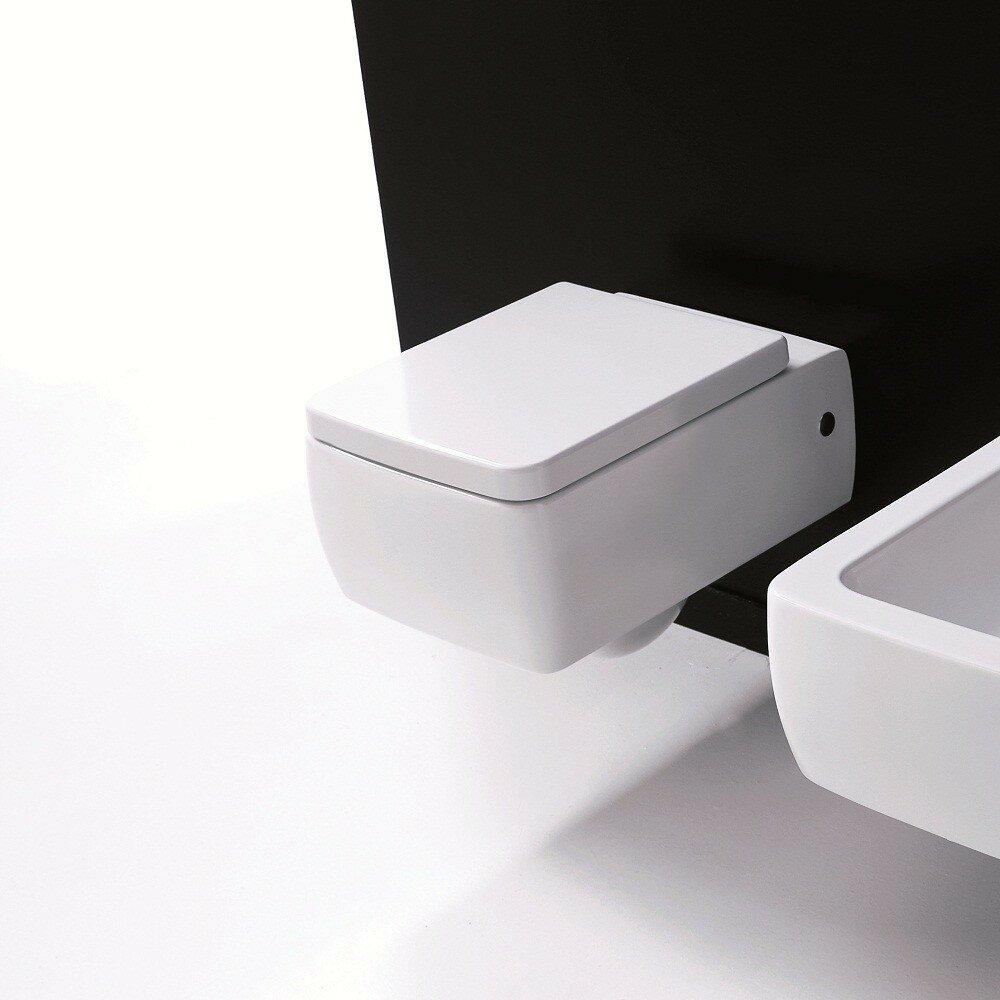 WS Bath Collections Ego Dual Flush Elongated Toilet Bowl   Wayfair