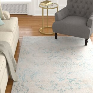 Powder Room Rugs Wayfair
