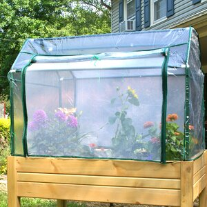 Eden Mini Greenhouse with Enclosure