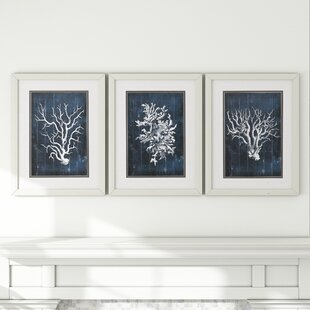 1aaa4e6c1ec  Wood Coral  3 Piece Framed Graphic Art Set in Blue