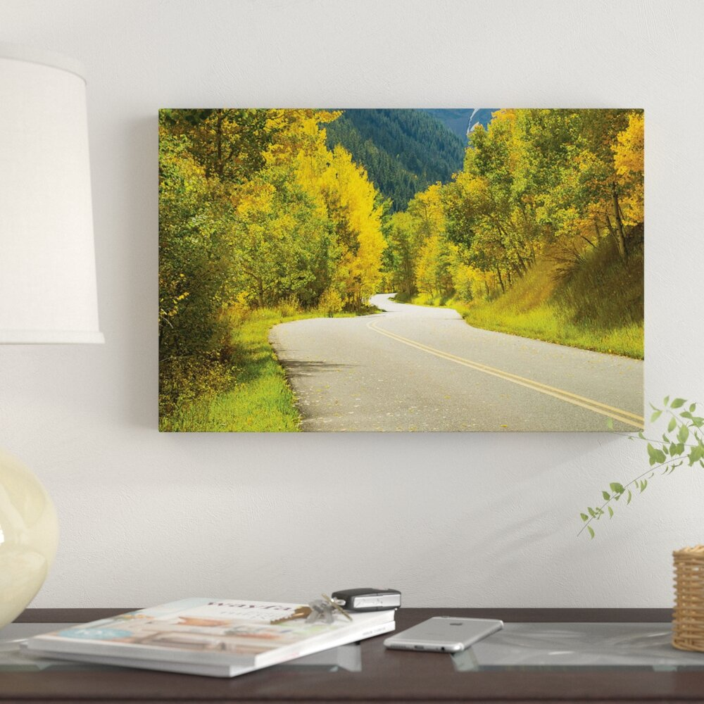 'Road Passing Through a Forest, Maroon Bells, Maroon Creek Valley, Aspen,  Pitkin County, Colorado, USA II' Photographic Print on Canvas