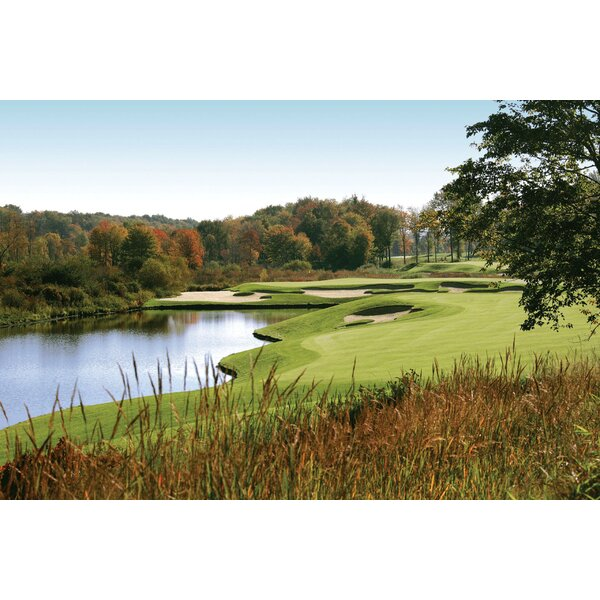Wallhogs Autumn Golf Wall Mural Wayfair