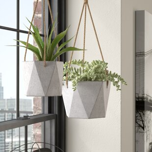 Concrete Planters You'll Love in 2019 | Wayfair