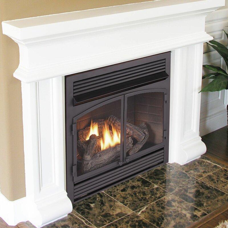 dual fuel ventless natural gas propane fireplace insert
