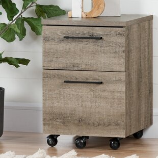 wholesale dealer 5fcba 65a9f Drawer Rolling Filing Cabinets You'll Love in 2019 | Wayfair