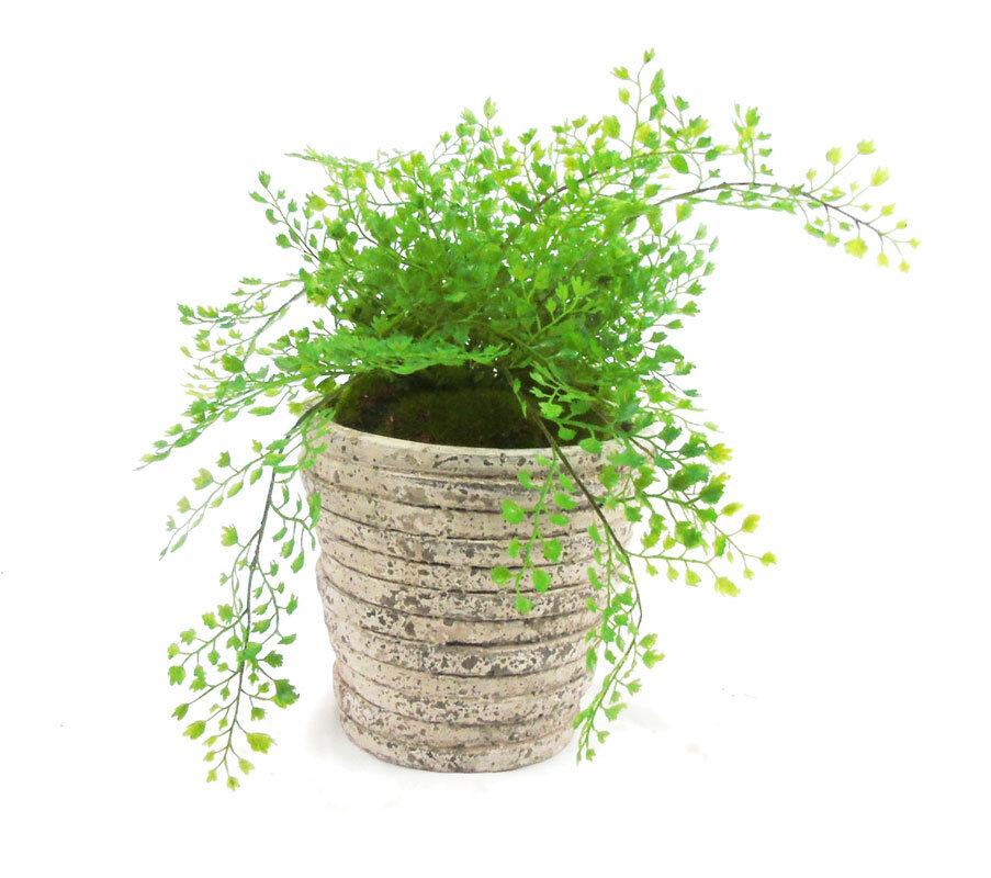 creative branch foliage faux maidenhair fern in planter wayfair