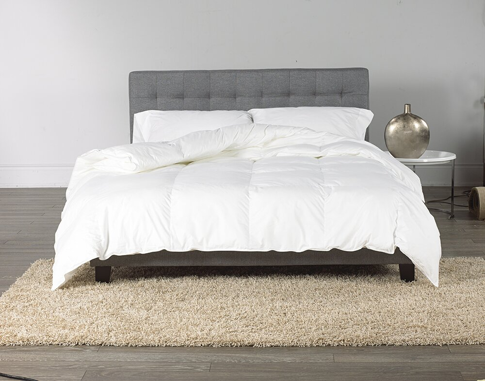 elegant goose comforter cascada product downright down ben barber by linen hampton