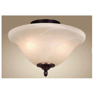 2light bowl ceiling fan light kit