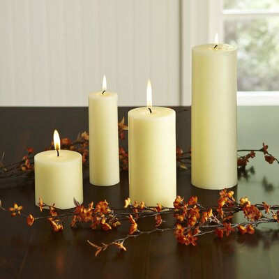 Charlton Home Pillar Candle Size: 3 H x 3 Diameter, Quantity: Set of 12