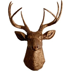 Animal Head Wall Decor faux taxidermy wall accents you'll love | wayfair