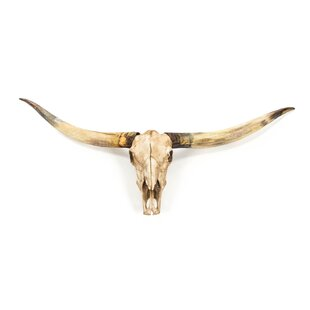 Bull Skull Wall Décor