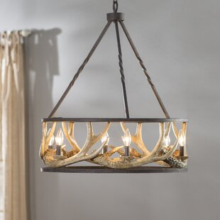 Wondrous Antler Lighting Wayfair Wiring Digital Resources Xeirawoestevosnl