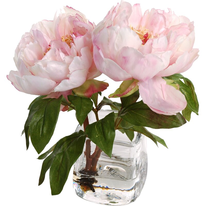New Growth Designs Faux Peony Floral Arrangement In Vase Reviews