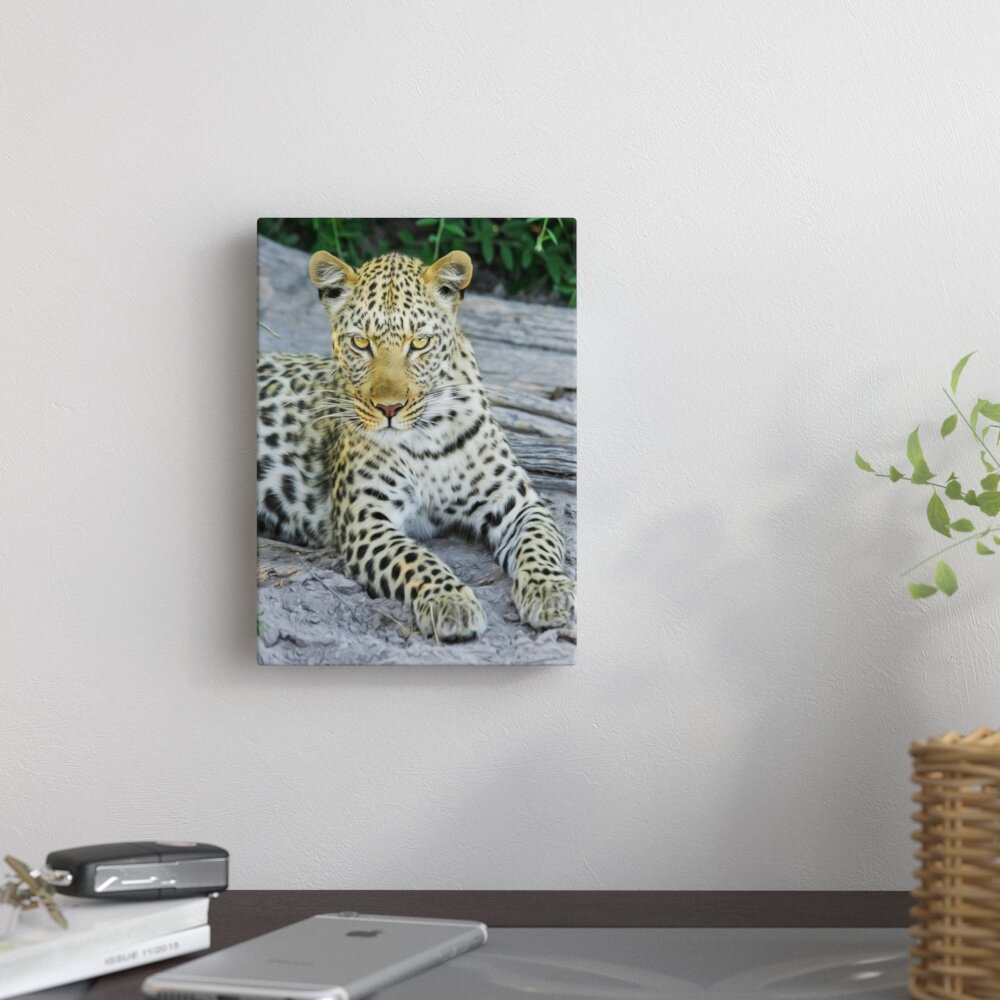 East Urban Home Leopard Animal Wildcat Photographic