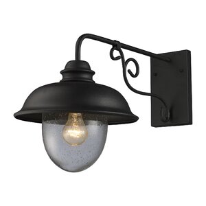 Ying Rustic 1-Light Outdoor Barn Light