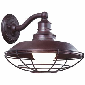 Idlewild 1-Light Outdoor Barn Light