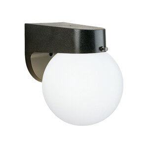 Plastic 1-Light Outdoor Sconce