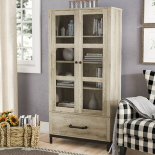 Trend Living Room Cabinets With Doors Model