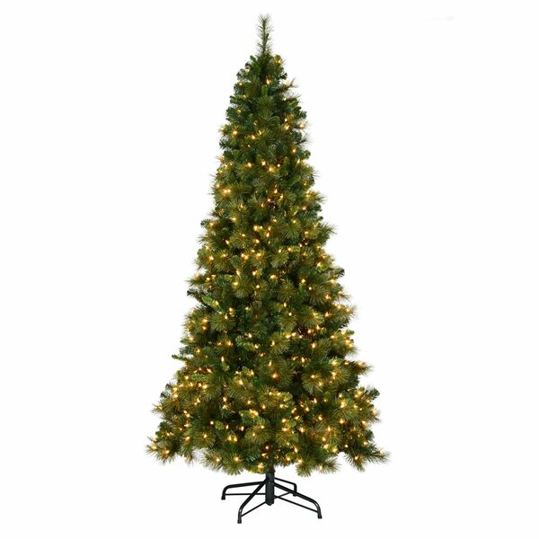 - Christmas Tree & Christmas Trees You'll Love Wayfair.co.uk