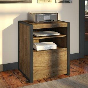 Eliezer Printer Stand 1 Drawer Vertical Filing Cabinet