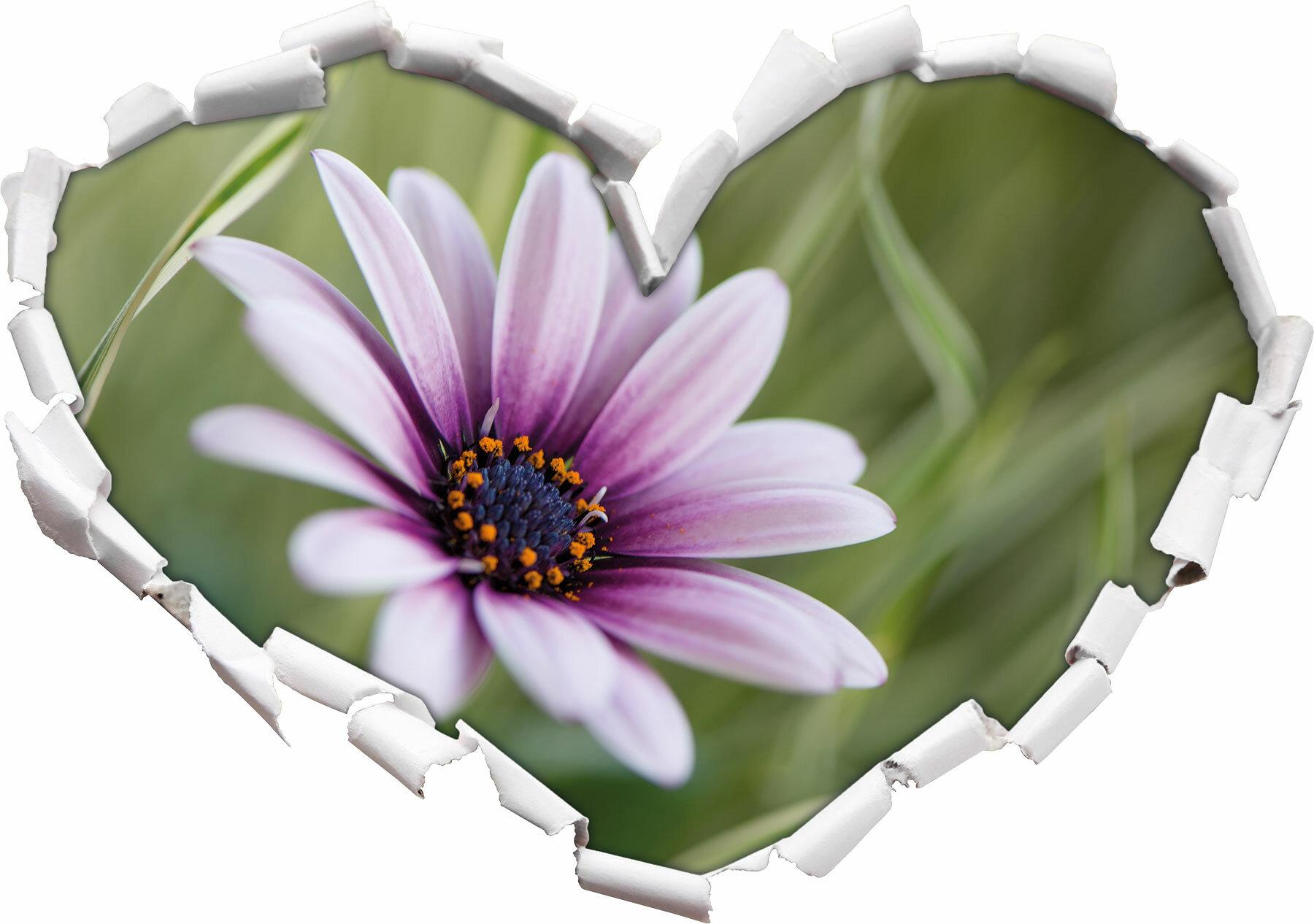 Attraktiv Wandtattoo Lila Sammlung Von Home Loft Concept Wunderschöne Blume In Der