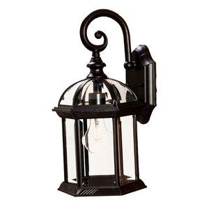 Grenville 1-Light Outdoor Wall Lantern