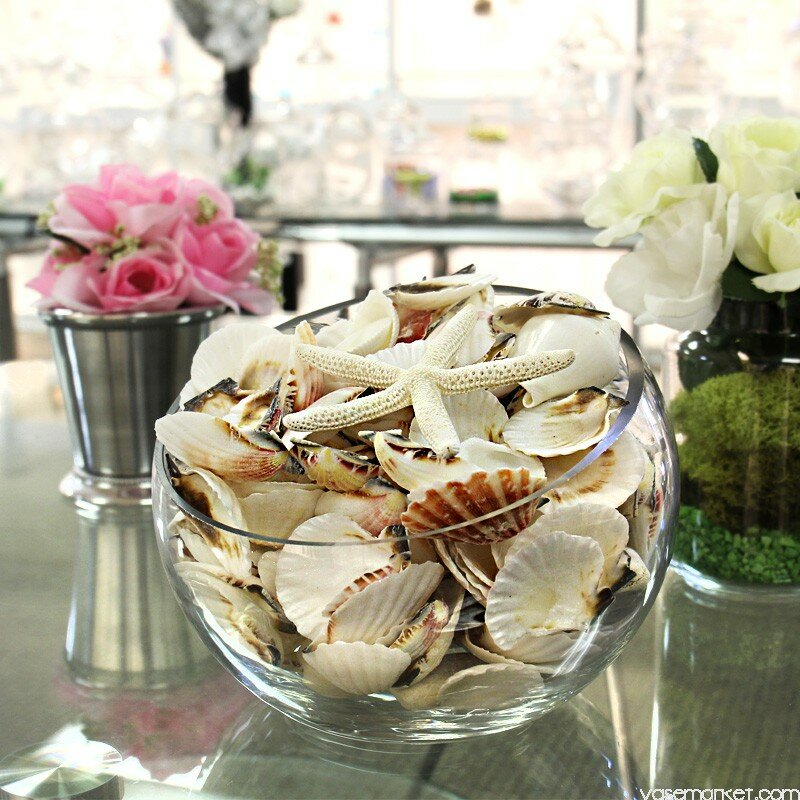 Cysexcel Beach Sea Shells Vase Fillers Reviews Wayfair