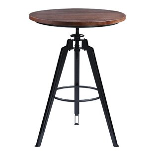 Louvenia Adjustable Pub Table