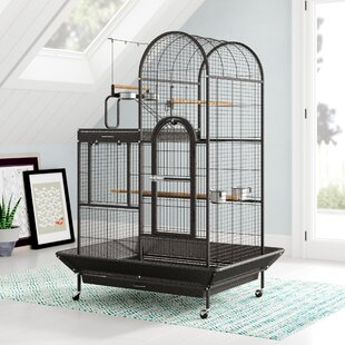 Parrot Bird Cages You'll Love in 2019 | Wayfair