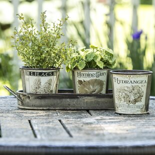 Vintage Garden Herb 3 Piece Pot Planter Set