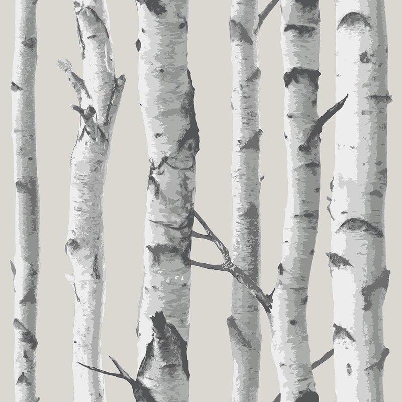 Birch Tree 18' x 20.5