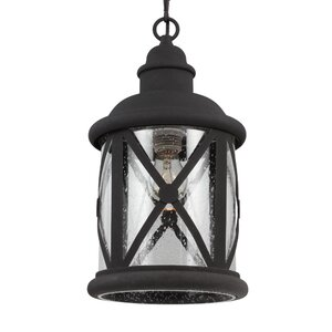 Falmouth 1-Light Foyer Pendant with Clear Seeded Glass