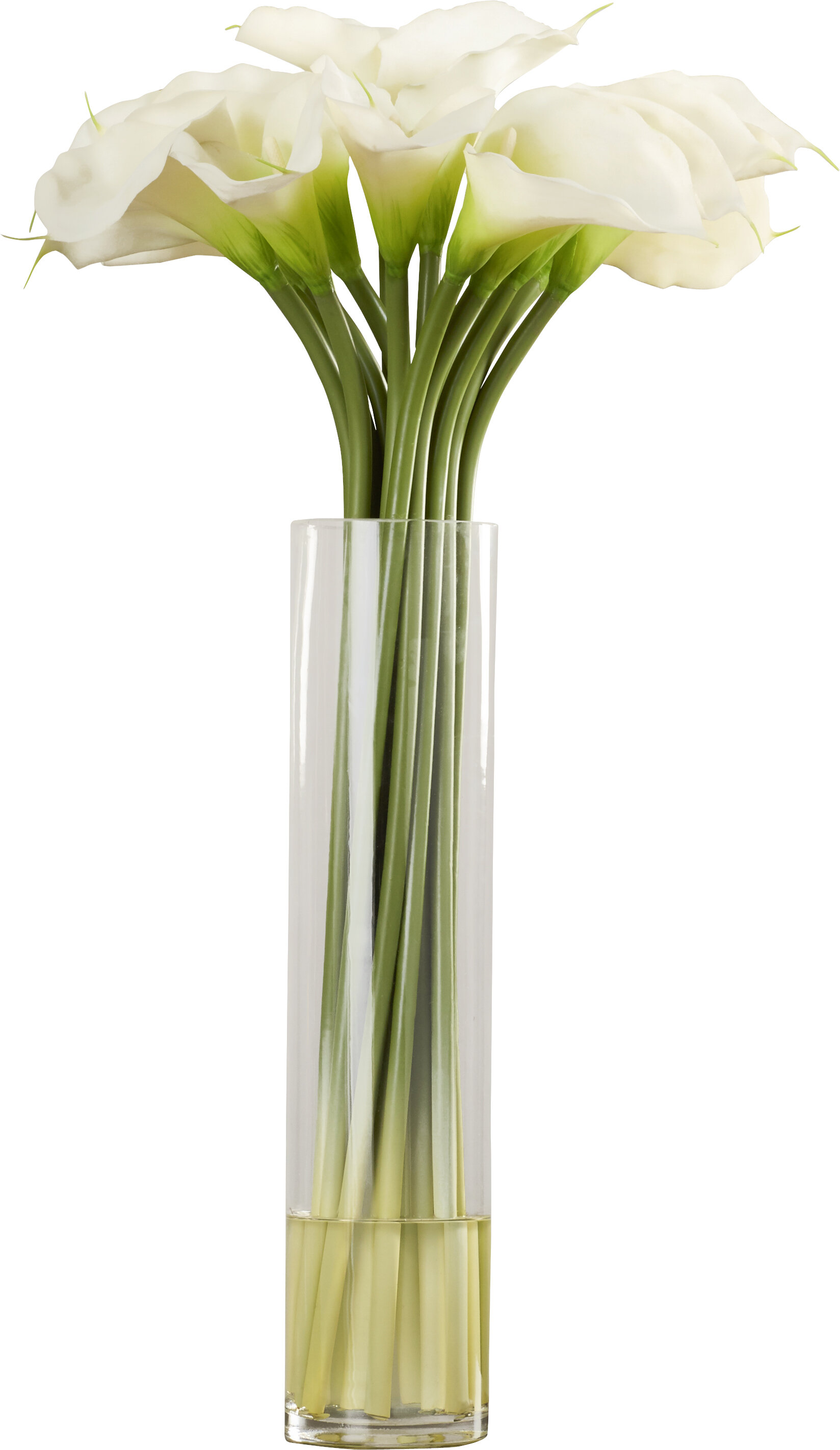 Calla lily in vase wayfair calla lily in cylinder silk flower arrangement reviewsmspy