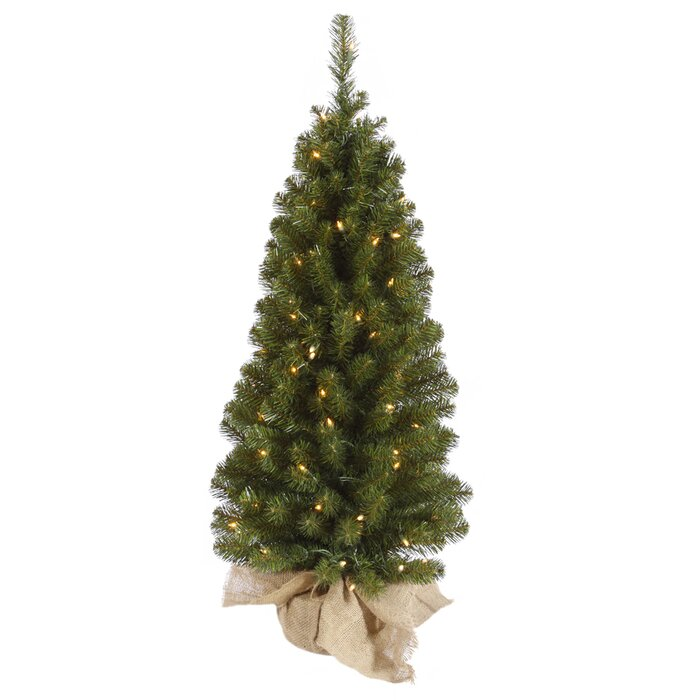 Felton 3' Green Pine Artificial Christmas Tree with 50 Clear Lights