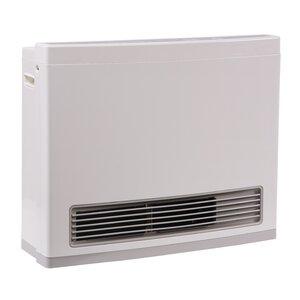 R Series 24,000 BTU Electric/Natural Gas Fan Wall Insert Heater
