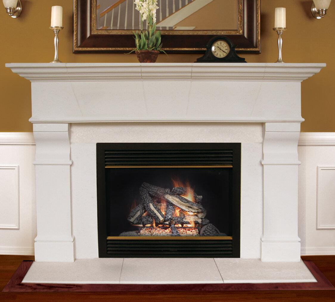 Phenomenal Gas Fireplace Mantel Surround Wayfair Home Interior And Landscaping Ponolsignezvosmurscom