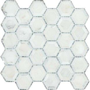 Telaio Hexagon Honed 2 X Marble Mosaic Tile In White