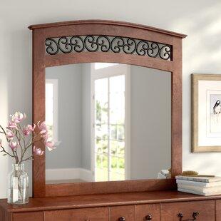 48 x 60 mirror glassless mirror elle arched dresser mirror 60 48 wayfair